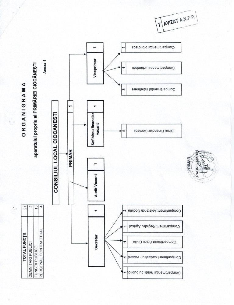 Organigrama Ciocanesti Dambovita